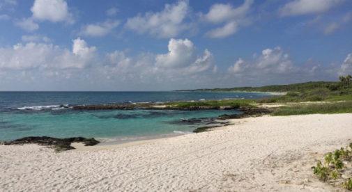 Riviera Maya Activities, Move to Mexico
