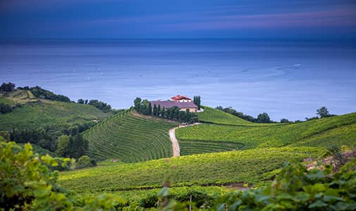 internationalliving.com - Cila Warncke - Three Expat Wine Entrepreneurs in Spain